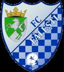 FC Fălești